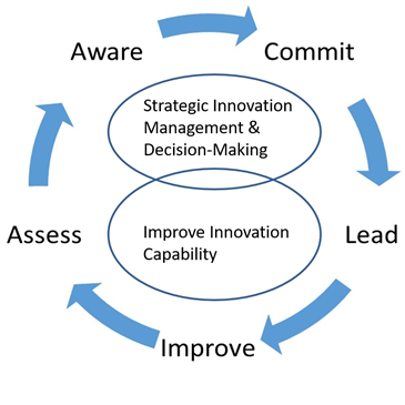 Model-InnovationMetrics-GertStaal